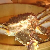 赤坂で蟹が待っている!板さんが部屋で料理をしてくれる。 「きた福」